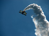 Aerobatic Grumman Ag Cat at Wings over Wine Country Air Show Fotografiskt tryck av Wade Eakle