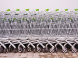 Line of Supermarket Shopping Trolleys Photographic Print by Tim Makins