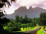 Road Through Lush Vegetation at Anahola with Mountain Backdrop Photographic Print by Ann Cecil