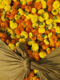 Single Marigolds of Yellow and Orange are Sold by Bagful to Local Worshippers Photographic Print by April Maciborka