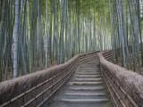 Escalier à travers la forêt de bambous au-dessus du temple de Adashino Nembutsu-Ji, Japon Photographie par Brent Winebrenner