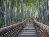 Stairway Through Bamboo Grove Above Adashino Nembutsu-Ji Temple Fotografie-Druck von Brent Winebrenner