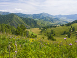 Mountains, Flower-Filled Meadows, and Farmland of the Altai Republic at Altayskiy Lámina fotográfica por Tim Makins