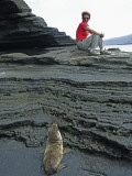 Sea Lion Cub Watching Visitor on Eroded Lava Rocks at Puerto Egas Photographic Print by Manfred Gottschalk