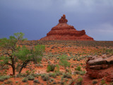 Lone Tree with Rock Formations in Desert Landscape with Storm Clouds in Valley of the Gods Photographic Print by Ruth Eastham &amp; Max Paoli