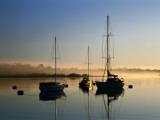 Moored Boats at Sunrise Fotografisk trykk av Richard l'Anson