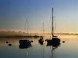 Moored Boats at Sunrise Fotografie-Druck von Richard l'Anson