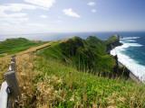 Kamui Peninsula Path and Coastline Photographic Print by Paul Dymond