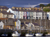 Town Harbour with Yachts Photographic Print by Neil Setchfield