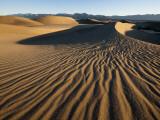 Dunes Photographic Print by Ariadne Van Zandbergen