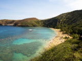 Coral Reef and Beach at Hanauma Bay Photographic Print by Sabrina Dalbesio
