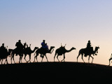 Desert Just Outside Timbuktu, Tuareg Camels at Sunset Photographic Print by Tony Wheeler