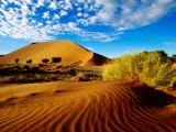Sand Dunes in Namib Desert Park Fotoprint van Ariadne Van Zandbergen