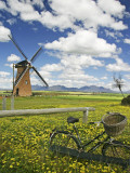 Lily Windmill with Stirling Ranges in Distance. Fotografie-Druck von Orien Harvey