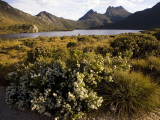 Dove Lake and Cradle Mountain Photographic Print by Andrew Bain