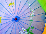 Parasol Detail at New Mexico State Fair Photographic Print by Ray Laskowitz