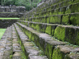 Detail of Moss Covered Stone Steps at Mayan Ruins of Quirigua Photographic Print by Paul Kennedy