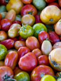 Red, Yellow and Green Tomatoes Photographic Print by Ray Laskowitz