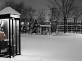 Shayne Hill - Public Telephone Box in Park, Covered in Snow, Ottowa-Cho - Fotografik Baskı