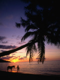 Horse and Rider Take an Easy Stroll Along Cane Bay in St Croix Photographic Print by Steve Simonsen