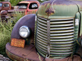 Rusted Pick-Up Trucks Photographic Print by Ray Laskowitz