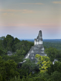 Temple of Great Jaguar (Temple I) Rising Above Tree Tops Photographic Print by Sean Caffrey