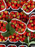 Strawberries for Sale at Market at Campo De' Fiori Photographic Print by Richard l'Anson