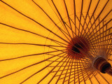 Underside of Yellow Parasol, Symbol of North Thailand Fotografisk tryk af Antony Giblin