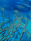 Aerial of Hardy Reef Offshore from Whitsundays Islands Photographic Print by Philip Game