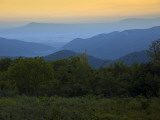 Looking Out over Forest-Covered Mountains in Evening Light Photographic Print by Mark Newman
