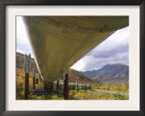 The 800-Mile Trans-Alaska Pipeline Framed Photographic Print