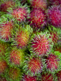 Rambutan for Sale at or Tor Kor Market Photographic Print by Austin Bush