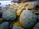 Granite Boulders at Wineglass Bay Photographic Print by Rob Blakers