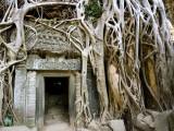 Angkor Thom Temple Photographic Print by Aldo Pavan