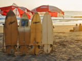 Surfboards on Lighthouse Beach in Late Afternoon Sunlight Photographic Print by Tim Makins