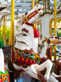 Carousel Horses at Yerba Buena Center for the Arts Reproduction photographique par Sabrina Dalbesio