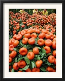 Vendors Clip Mandarin Oranges Trees as They Wait for Customers at a Shopping Mall Framed Photographic Print