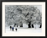 Cross Country Skiers Head Through a Deep Layer of Snow on the Mountain Schauinsland Framed Photographic Print