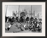 People Feed Pigeons at Saint Marks Square Framed Photographic Print
