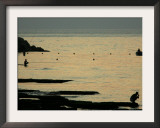 Men are Silhouetted Against the Sea as They Fish and Relax on the Beirut Coastline, August 24, 2006 Framed Photographic Print by Matt Dunham