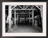 A Catholic Mass is Celebrated in a Stable in Cherbourg, France Framed Photographic Print