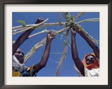 Displaced Sudanese Women Try to Rebuild their Tents in Refugee Camp in the Darfur Area of Sudan Framed Photographic Print