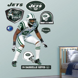 Darrelle Revis Wall Decal