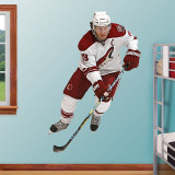 Shane Doan   Wall Decal