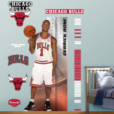 Derrick Rose Growth Chart   Wall Decal