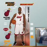 Dwyane Wade Growth Chart   Wall Decal