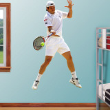 Tommy Haas Wall Decal