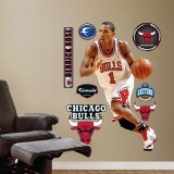 Derrick Rose Wall Decal