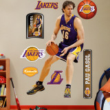 Pau Gasol Wall Decal