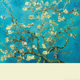 Branch of an Almond Tree in Blossom Wall Decal